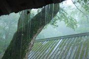豪雨0612